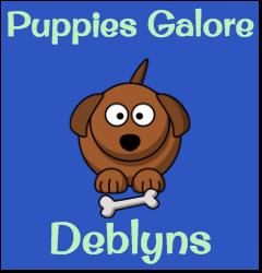 Deblyns